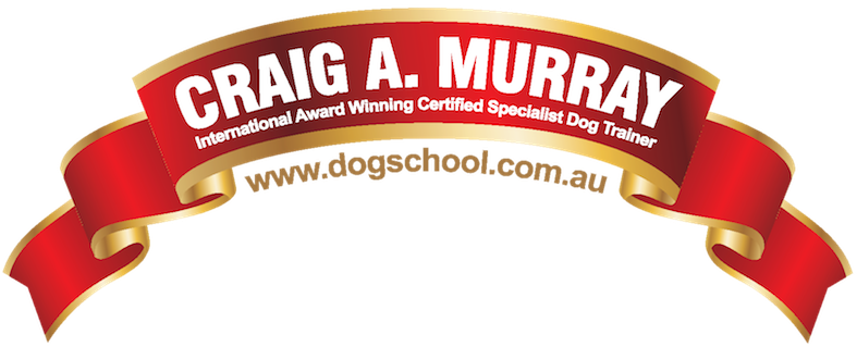 Craig A. Murray Dog School
